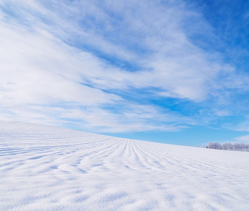 北海道 雪原