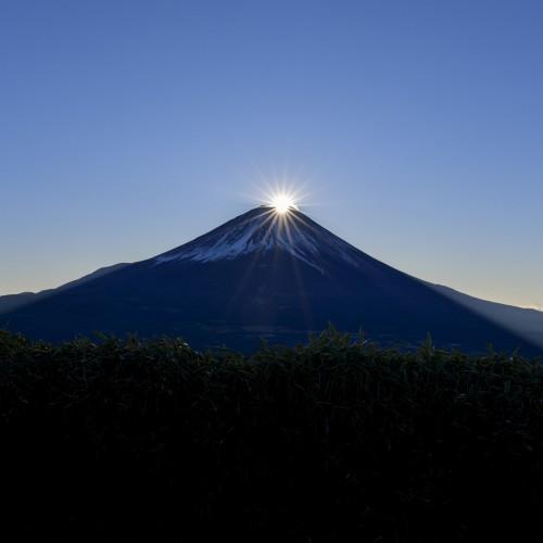 山梨県 竜ヶ岳 富士山
